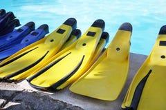 Aletas amarelas. Imagens de Stock