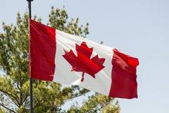 Aletas de bandera canadienses en el viento Imágenes de archivo libres de regalías