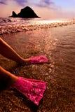 Aletas do nadador na água Foto de Stock