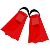 Aletas rojas Fotografía de archivo libre de regalías