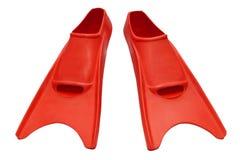 Aletas vermelhas isoladas Imagem de Stock Royalty Free