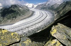 Aletsch glaciär, den största glaciären i fjällängarna, Swizerland royaltyfri bild