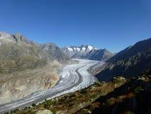 Aletsch glaciär som ses från Riederalpen arkivfoto