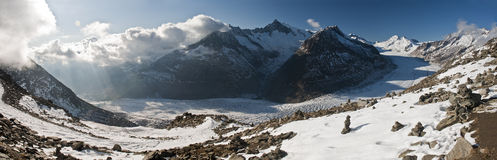 Aletsch glacier. Panorama seen from Eggishorn in the Swiss alps Royalty Free Stock Photos