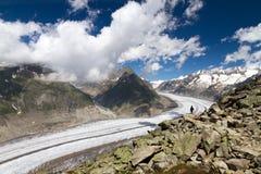 Aletsch glacier. The landscape of the massive Aletsch glacier dwarfing a lonely tourist stock photos