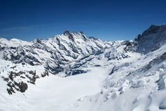 Aletsch glacier. View from the Jungfrau royalty free stock photography