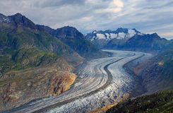 The Aletsch glacier in the alps Royalty Free Stock Image