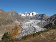 Aletsch Glacier In The Autumn. Aletsch Glacier, UNESCO World Heritage Site royalty free stock images