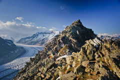 Aletsch glacier with Bettmerhorn Stock Photography