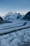 Aletsch glacier with Moench in the background Stock Images
