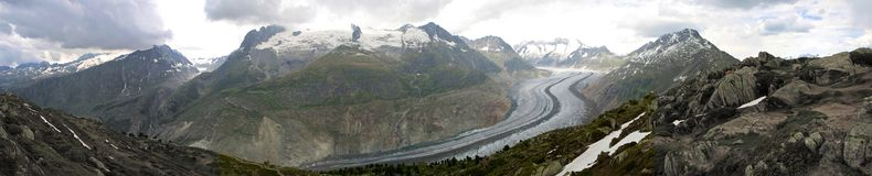 Aletsch Glacier Panorama Royalty Free Stock Image