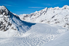 Aletsch Glacier in Winter. Bernese Alps, Canton of Valais, Switzerland: The Great Aletsch Glacier with blue sky and fresh snow in winter royalty free stock photo