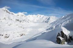 Aletsch Gletscher/Aletsch glaciär Arkivfoton