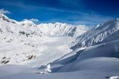 Aletsch Gletscher/Aletsch glaciär Arkivbild