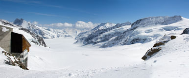 Aletsch panorama Stock Images