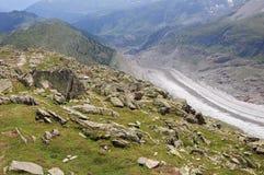 Aletschglacier. Die Schweiz. lizenzfreie stockfotografie