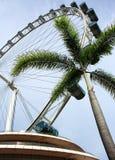 Aletta di filatoio ed albero del cielo di Singapore Immagine Stock Libera da Diritti