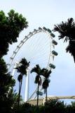 Aletta di filatoio ed albero del cielo di Singapore Immagini Stock Libere da Diritti