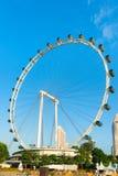 Aletta di filatoio gigante di Singapore della ruota panoramica Immagini Stock