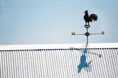 Aletta di tempo del gallo Fotografie Stock Libere da Diritti