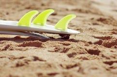 Alette del surf Immagini Stock