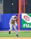 Alex Cora, Los Angeles Dodgers Imagem de Stock Royalty Free