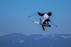 Alex Neurohr, Schweizer Skifahrer Lizenzfreie Stockbilder