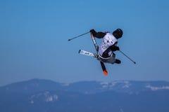 Alex Neurohr, Swiss skier Royalty Free Stock Images