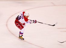 Alex Ovechkin Washington Capitals Stock Photography