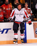 Alex Ovechkin Washington Capitals Royalty Free Stock Photos