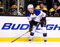 Alex Pietrangelo St. Louis Blues Royalty Free Stock Photo