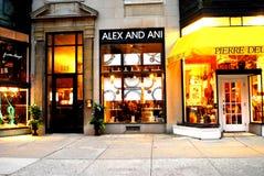 Alex-und Ani-Schmucksache-Speicher, Boston, MA lizenzfreie stockbilder