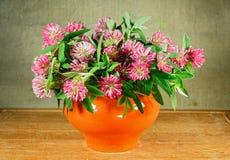 alexa 1 ζωή ακόμα Ανθοδέσμη των λουλουδιών λιβαδιών Στοκ εικόνα με δικαίωμα ελεύθερης χρήσης