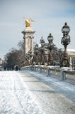 Alexander 3 bridge in paris by winter Stock Photos