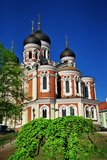 alexander cathedrale nevsky tallinn Royaltyfria Bilder