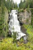 Alexander Falls Royaltyfri Fotografi