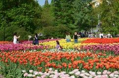 Alexander Garden Moskva, Ryssland Royaltyfri Fotografi