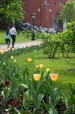 Alexander-Garten in Moskau Lizenzfreies Stockbild
