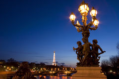 Alexander III Bridge - Paris - France. View of Paris at night Royalty Free Stock Images