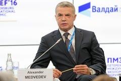 Alexander Medvedev Stock Images