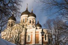 Alexander Nevsky cathedral. In Tallinn, Estonia Royalty Free Stock Photos