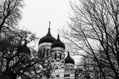 Alexander Nevsky Cathedral en Tallinn, Estonia Imagen de archivo