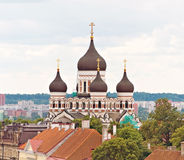 Alexander Nevsky Cathedral. Stock Images
