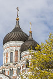 Alexander Nevsky Cathedral. In Springtime .Tallinn City ,Estonia Royalty Free Stock Photo