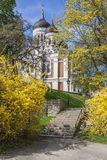 Alexander Nevsky Cathedral. Tallinn City,Estonia Stock Images