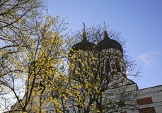 Alexander Nevsky Cathedral in Tallinn. Estonia Stock Images