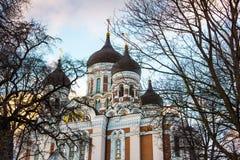 Alexander Nevsky Cathedral in Tallinn Stock Photography