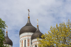 Alexander Nevsky Cathedral. Tallinn Medieval Town,Estonia Royalty Free Stock Photography