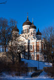 Alexander Nevsky Cathedral winter view Stock Photo