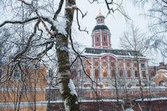 Alexander Nevsky Lavra en invierno foto de archivo